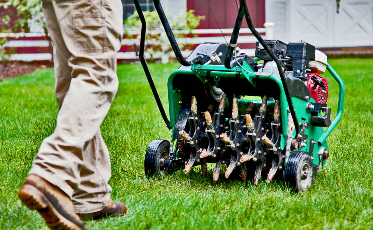 How often should I aerate my lawn in Garner NC